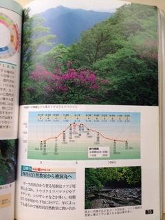 image-11e29.jpeg