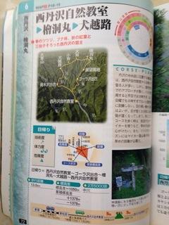 image-dc3b1.jpeg